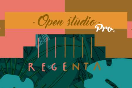 Open Studio para profesionales