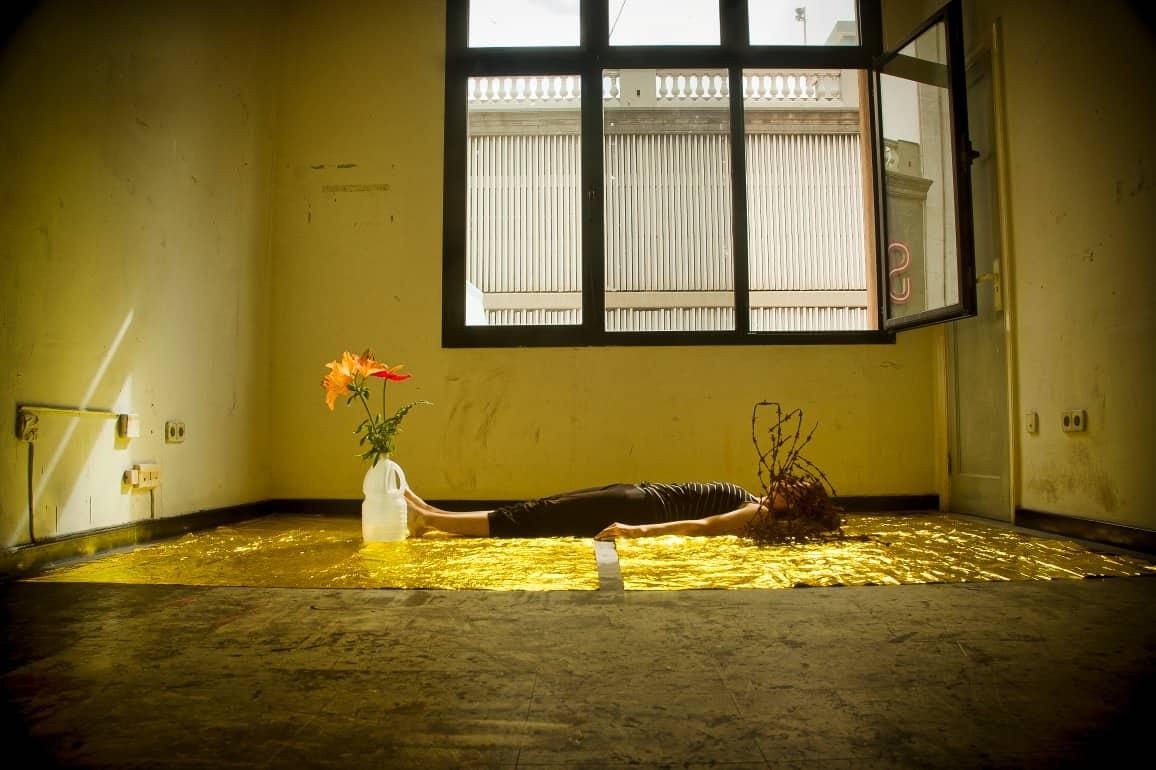 Presentación del proyecto de la artista en residencia, Ana Matey